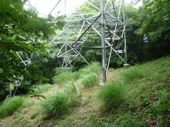 P1170249送電線鉄塔.JPG