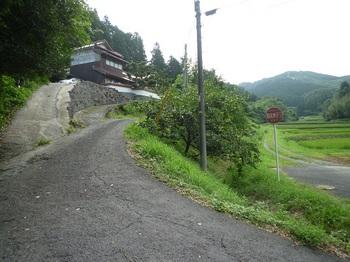 P1170320林道分岐.JPG