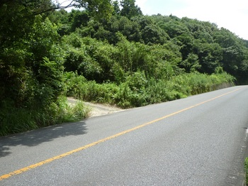P1170387林道出入口(逆方向).JPG