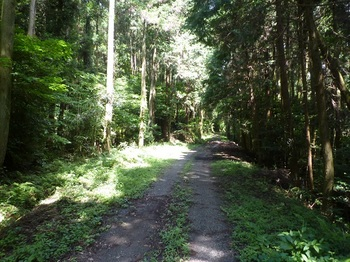 P1170468未舗装林道.JPG