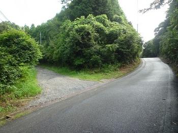 P1170530林道入口.JPG