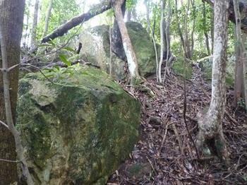 P1170608岩.JPG