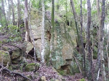 P1170609大岩.JPG