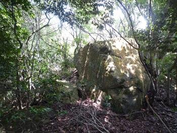P1170680小岩.JPG