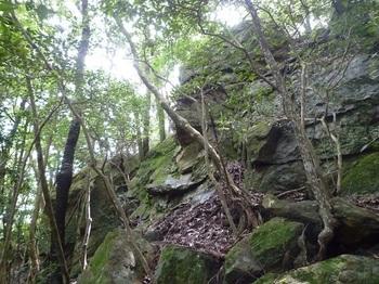 P1170703大岩(西方向から).JPG