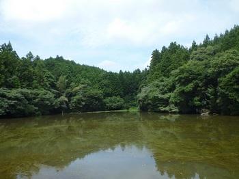 P1170720洗川溜池(上方).JPG
