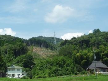P1170729福正寺から山頂方向.JPG