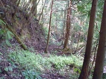 P1170827山道.JPG