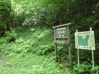 P1170830林道から谷(逆方向).JPG