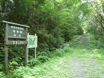 P1170831林道起点案内板・林道(左方向).JPG