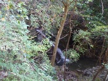 P1180269小滝.JPG