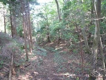 P1180303北側登山道.JPG