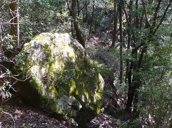 P1180361立岩?.JPG