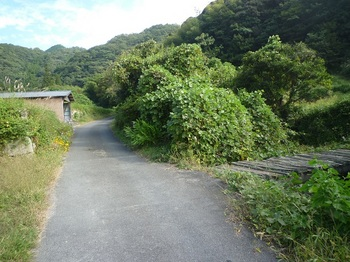 P1180531枕木橋.JPG