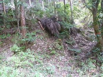 P1180611林道からの取り付き(逆方向).JPG
