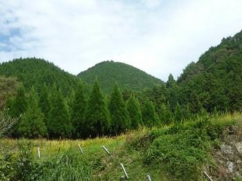 P1180618丸ヶ岳.JPG