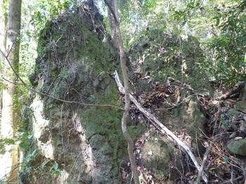 P1180836集塊岩.JPG