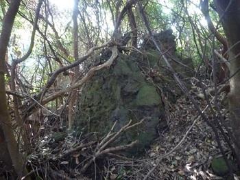 P1180849集塊岩が散在.JPG
