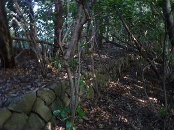 P1180897両側石垣の鞍部(250m).JPG