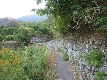 P1180971石垣沿いのコンクリート小道.JPG