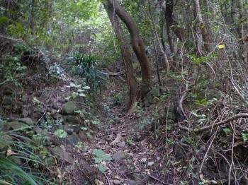 P1190001溝状の山道.JPG