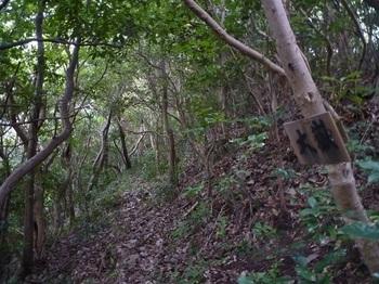 P1190009山道・道標.JPG