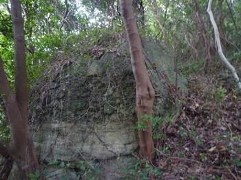 P1190014集塊岩.JPG