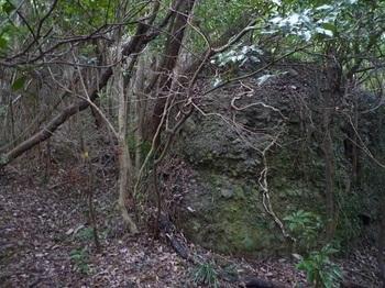 P1190017集会岩(右).JPG