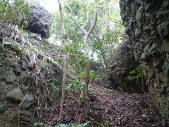 P1190026集塊岩の間を登る.JPG