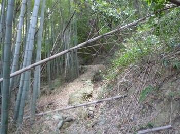 P1190173竹林沿い.JPG