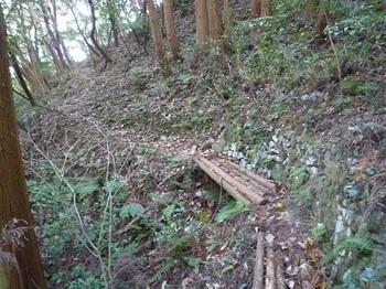 P1190177丸木橋.JPG