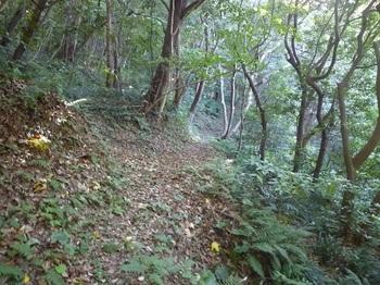 P1190319山道(下り).JPG