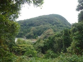 P1190465見壁山.JPG