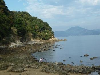 P1190575漁港の東海岸.JPG