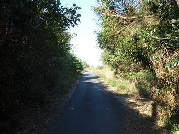 P1190752頭島の舗装道.JPG