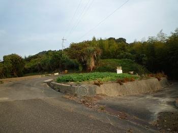 P1190795墓地分岐(右へ).JPG