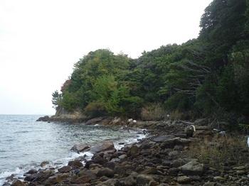 P1190855岩石海岸(真名ヶ浦)東方向.JPG