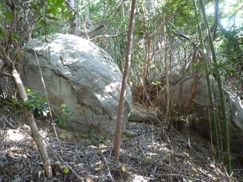 P1190924小岩二つ.JPG