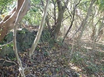 P1200318段上の石垣(逆方向).JPG