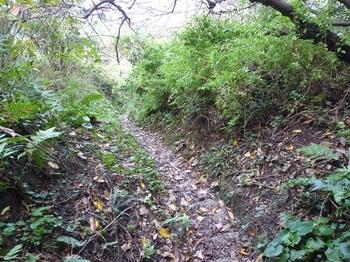 P1200351石段の山道.JPG