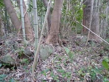 P1210140丸山最高所の石積み(逆方向).JPG