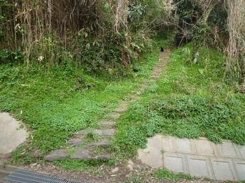P1210172山道分岐.JPG