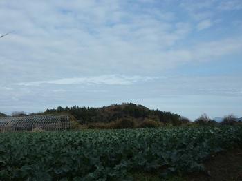 P1210178焼岳・ブロッコリー畑.JPG