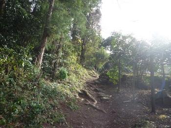 P1210190耕作地沿いに登る.JPG