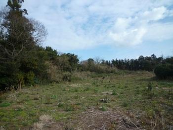 P1210201やや荒れた耕作地.JPG