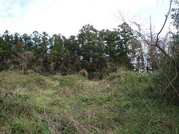P1210202耕作地跡.JPG