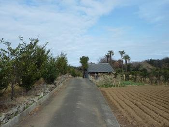 P1210216農道.JPG