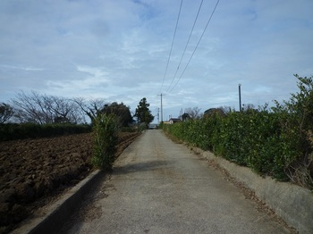 P1210220農道を直進.JPG