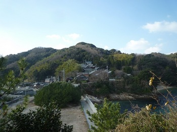 P1210501樫山.JPG