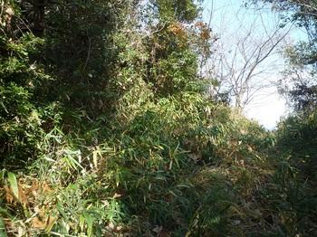 P1210562山道へ出る(逆方向).JPG